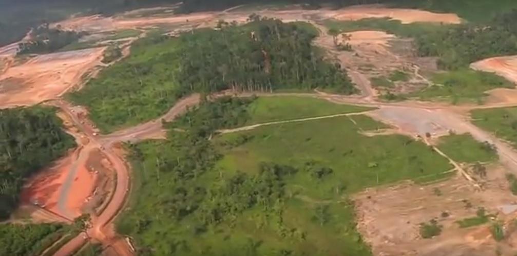Amazonia wycinka lasów